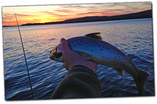 Maine Moosehead Lake Fishing - big lake, remote ponds, salmon, trout, bass, families